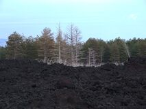 Etna-Volcano-Sicily - Creative Commons by gnuckx Royalty Free Stock Photo