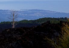 Etna Volcano Sicily Italy - Creative Commons by gnuckx Royalty Free Stock Images