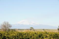 Etna vulcan e país Imagem de Stock Royalty Free