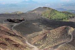 etna wulkan Zdjęcia Stock
