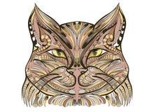 Etnich katt Royaltyfria Foton