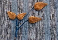 Etnika. Exotic tree immitation on blue fabric. Autumn background. Thanksgiving day card.Creative idea stock images