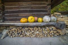 Etnisch Oekraïens dorp in de herfst stock foto's