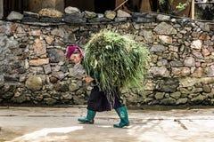 Etnisch vrouwen dragend gras royalty-vrije stock afbeeldingen