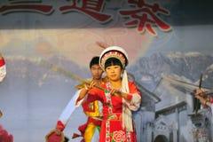 Etnische minderheid het dansen Stock Fotografie