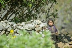 Etnische minderheidbaby, bij oude Dong Van-markt stock foto's