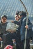 Etnische minderheidmens Stock Fotografie