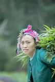 Etnische minderheidvrouwen bij Lung Cam-dorp royalty-vrije stock fotografie