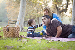 Etnisk familj för blandad Race som har picknicken i parken royaltyfria bilder