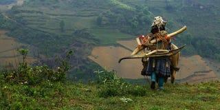 etniskt folk royaltyfri foto