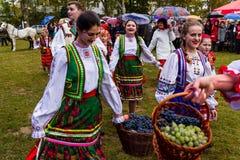 Etnofestival Bobovischanske grono-2016 in Zakarpattya-gebied Stock Afbeelding