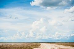 Etosha Nationaal Park, Namibië, Afrika Royalty-vrije Stock Foto's