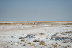 Etosha's panorama Royalty Free Stock Images