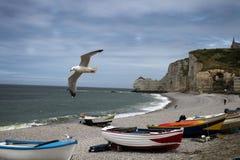 Etretat海滩在法国的海岸的 免版税库存照片