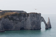 Etretat Foto de Stock Royalty Free