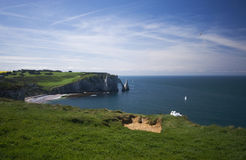Etretat beach and couple of seagulls Royalty Free Stock Photo