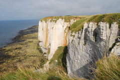 Etretat Cliff Royalty Free Stock Photo