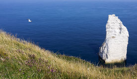 Etretat cliff in normandy coast Stock Photos