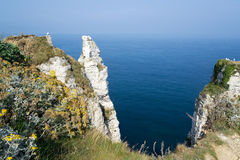etretat cliff in normandy coast royalty free stock photo