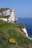 Etretat hill in Normandy Stock Photography