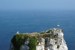 Top of Etretat hill in Normandy Royalty Free Stock Photos