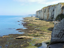 Etretat english channel coast during low tide Stock Image