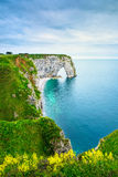 Etretat, Manneporte natural rock arch and yellow flowers. Norman Royalty Free Stock Images