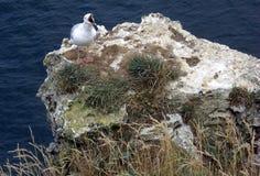 Etretat. Sea cliffs landscape Etretat Normandy France Stock Image