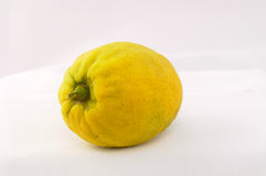 Etrog Royalty Free Stock Photos