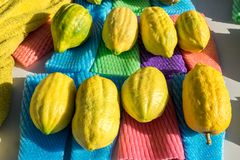 Etrog - is gele sukade of Citrusvruchtenmedica royalty-vrije stock afbeelding