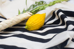Etrog, lulav on talit Royalty Free Stock Photo