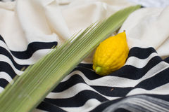 Etrog, lulav on talit Royalty Free Stock Images
