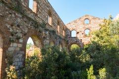 Etruscan的废墟在坎皮利亚马里蒂马, Ital开采工厂 库存图片