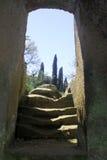 etruscan necropolis för banditaccia Royaltyfria Bilder