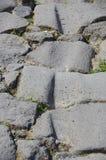 Etsade spår i gator av Pompeii, Italien Royaltyfria Bilder