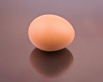 Ett ägg Arkivbilder