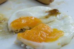Ett ägg Royaltyfri Fotografi