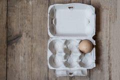 Ett ägg i en låda Royaltyfri Foto