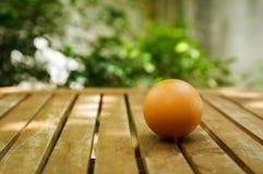 Ett ägg på trätabellen med naturbakgrund Arkivfoto