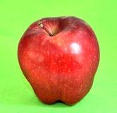Ett äpple Fotografering för Bildbyråer