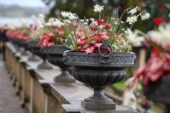 Ett antal metallvaser med härliga blommor arkivfoto