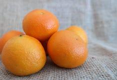 Ett antal tangerins Royaltyfria Bilder