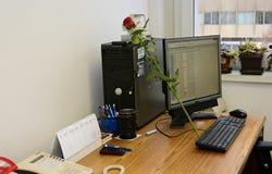 Ett arbetsskrivbord med en dator a och rosor fotografering för bildbyråer