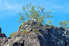 Ett australiskt landskap vaggar bildande royaltyfri foto
