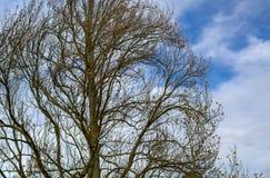 Ett avbrott i molnen Royaltyfri Fotografi