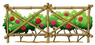 Ett bambustaket med blomningväxter Royaltyfri Fotografi