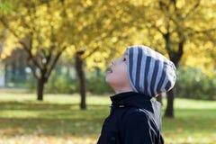 Ett barn i hösten parkerar för går se fåglarna arkivbild