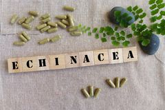 Växt- medicin för Echinacea Arkivbilder