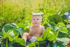 Ett behandla som ett barnsammanträde bland kålen Barn finnas i kål royaltyfri bild