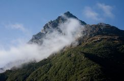Ett berg med en morgonmist av den stora Routeburnen går i början i Fiordland i Nya Zeeland royaltyfri foto